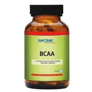 BCAA חומצות אמיניות מסועפות